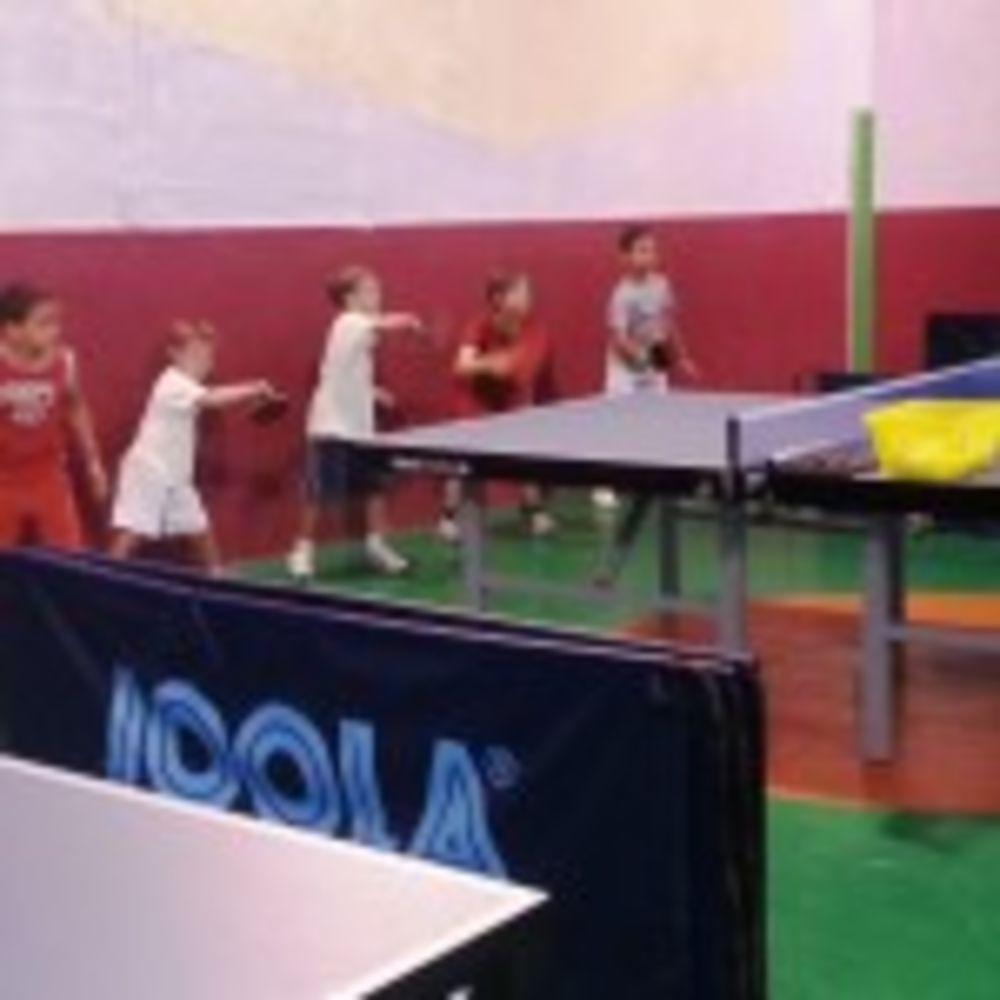 HiTT mini cadet table tennis